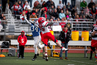 Batavia vs. Hornell Section V Playoff 2015
