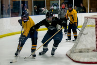 Batavia Mens Hockey League Championship 2015