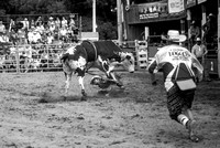 Attica Rodeo Saturday Matinee Aug 8 2015